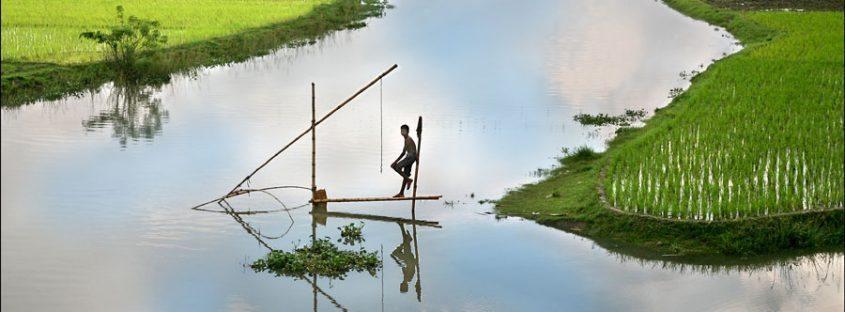 india rural aqauculture