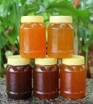 Unfiltered Raw honey