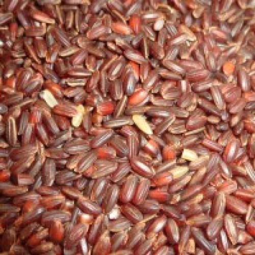 red_rice_organic_farmer_junction