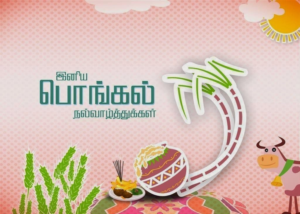 Happy-Pongal-Wishes-10 (1)