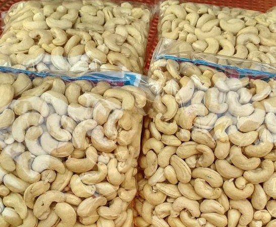 cashew organic india