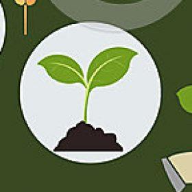 Profile picture of Vijay fertilizer